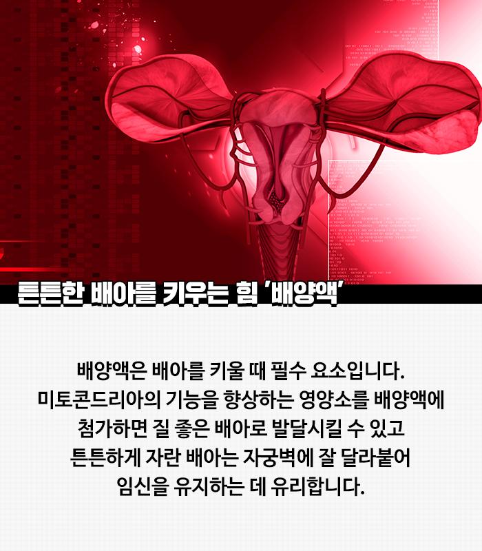 03_본문_튼튼한-배아를-키우는.png